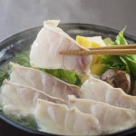 今が旬!長崎県産天然真クエ(九絵)鍋
